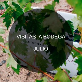 Visit our winery- July