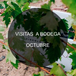 Visit our winery- October