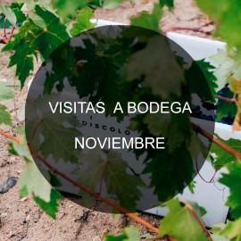 Visit to the winery - November